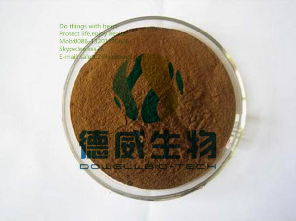 Functional Foods Material Saponins powder Tribulus Terrestris extract