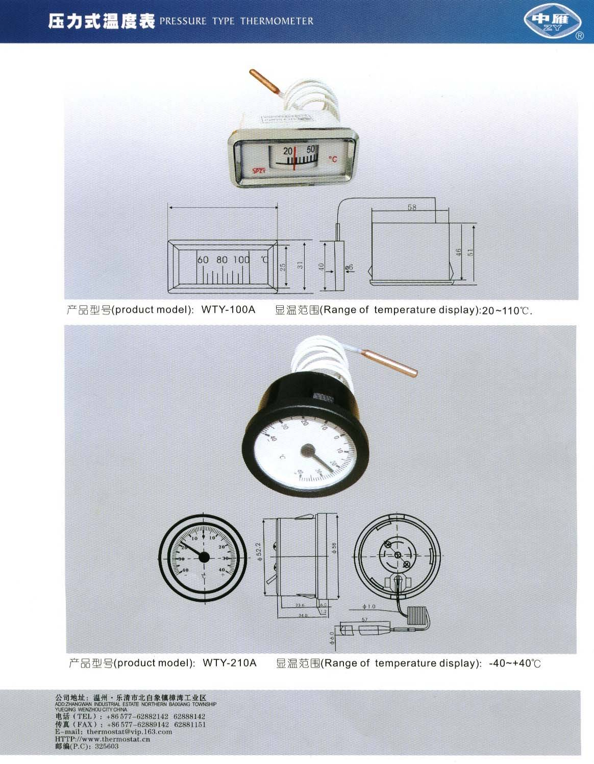 Thermometer WTY-100A