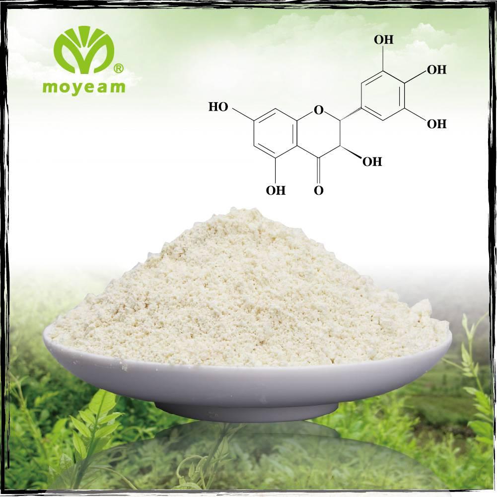 Dihydromyricetin Vine Tea Extract above 90%