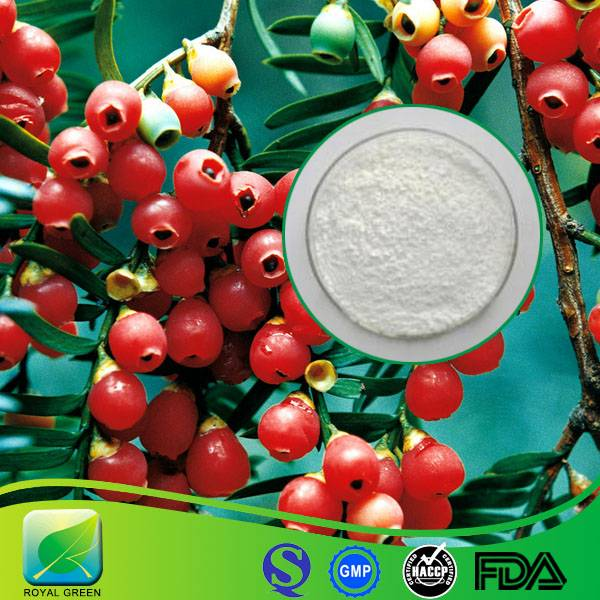 High Purity Anti-tumor Taxus Chinensis Extract Paclitaxel Price