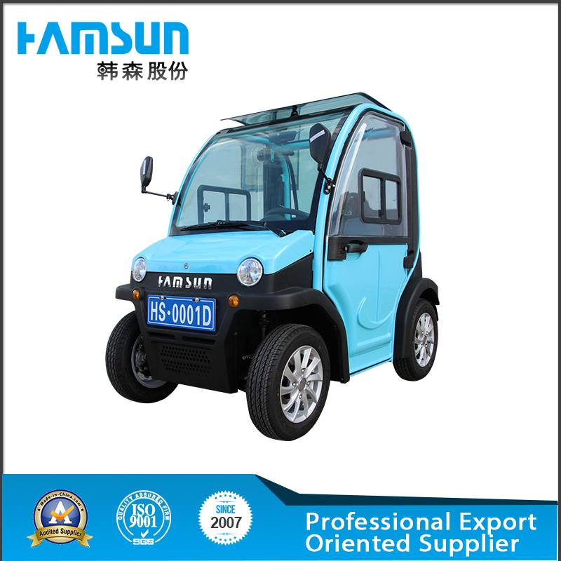 Hot selling Mini Electric Car with 2 passengers