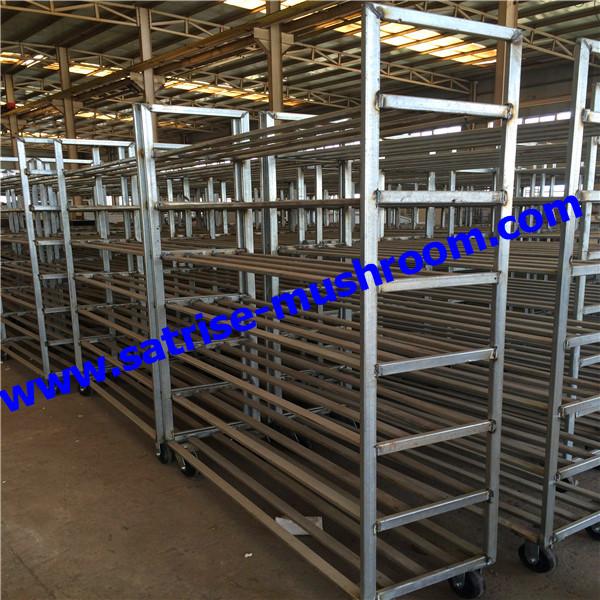 Adjustable Mushroom Storage Rack Mushroom Equipment Factory