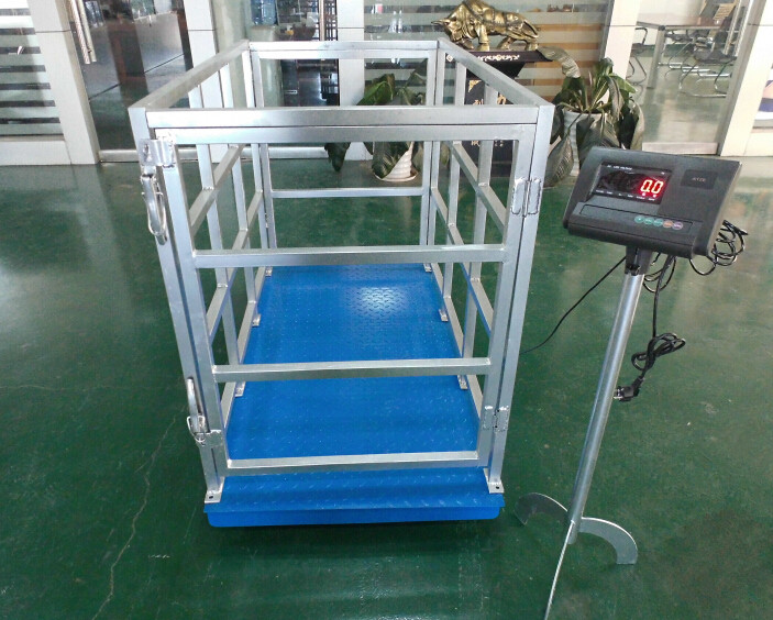 Animal scale / animal weighing scale/ pig scale/ sheep scale