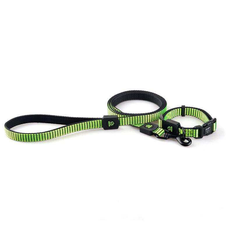 Fluorescent Nylon dog collar, dog lead, dog harness