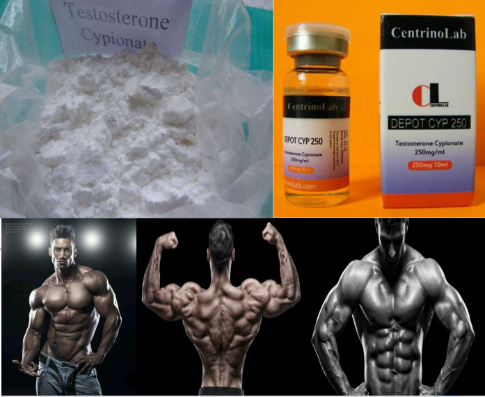 99% High Purity Testosterone Cypionate/Test Cyp/DEPOT CYP 250 raw steroid powder for muscle building