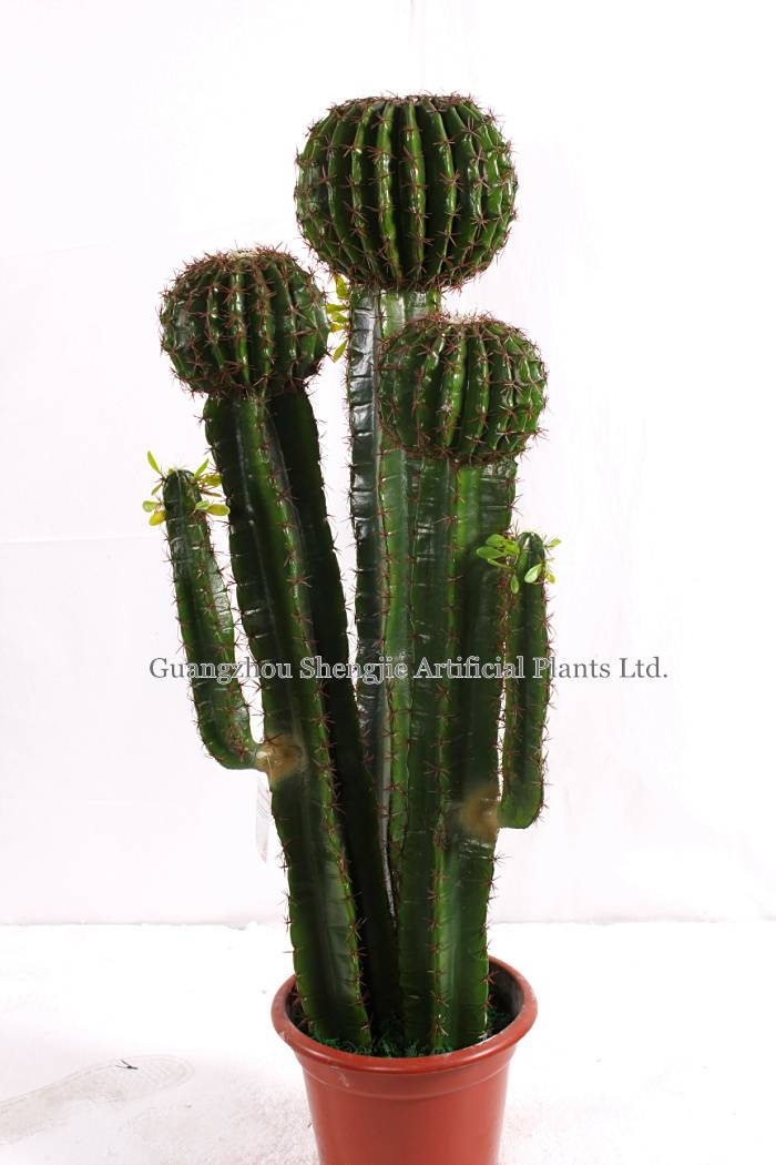 artificial green plants/artificial  Cactus