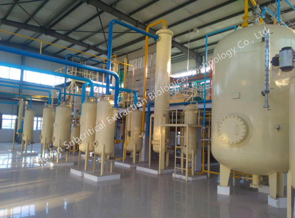 Moringa Seed Oil Subcritical Extraction Machine