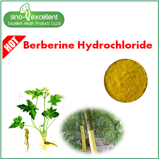 berberine 97% from Phellodendron bark Extract