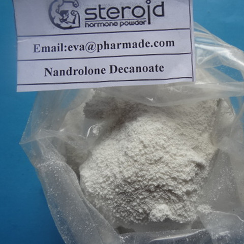 Nandrolone Base  For Men Bodybuilding to Rebuild Body Tissue