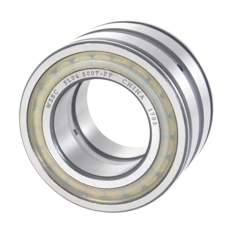 Sealed Double Row Full Complement Cylindrical Roller Bearings SL04 5010 PP