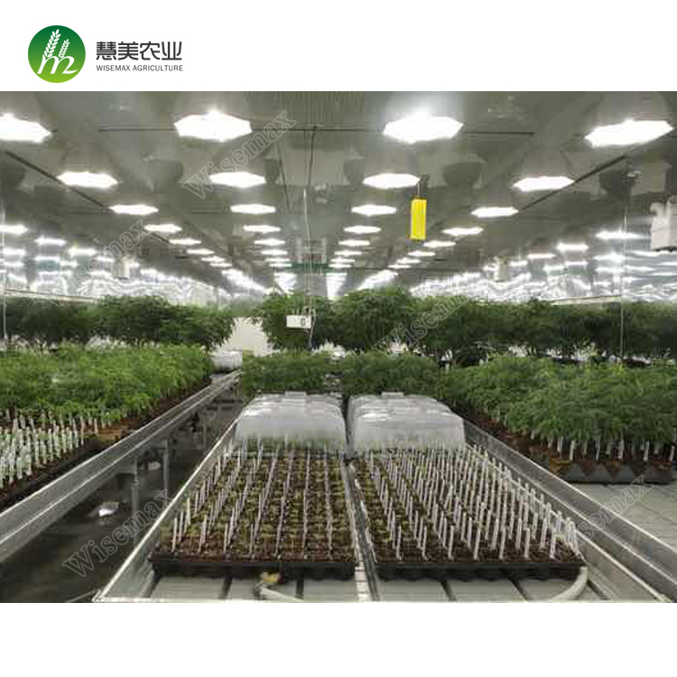 2018 Hot sale greenhouse ebb and flow hydroponics system table