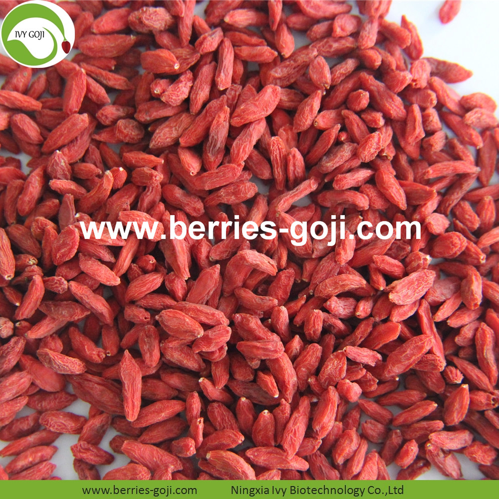 New Wholesale Dried Low Pesticide Goji Berries