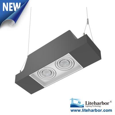 Liteharbor Pendent Mount Twin GU10 LED Multiple Downlight