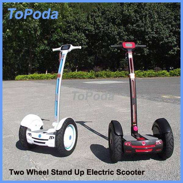 Chinese manufacture new novelty electric chariot
