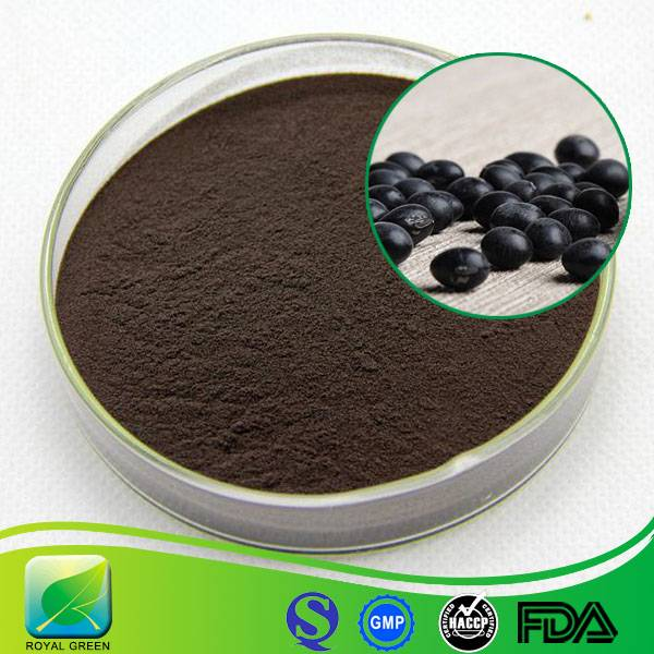 Best Quality Black Beans Extract for Sale