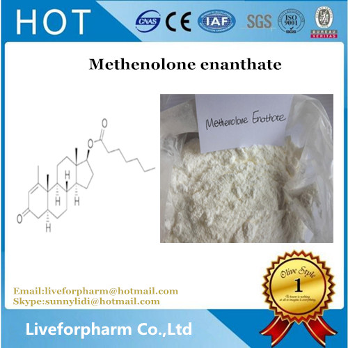 Methenolone enanthate Powder Primobolan Depot for Bodybuilding CAS 303-42-4