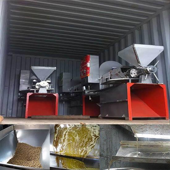 Automatic 6YL-100 screw oil press cold press oil machine