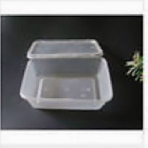 Disposable plastic divided food tray
