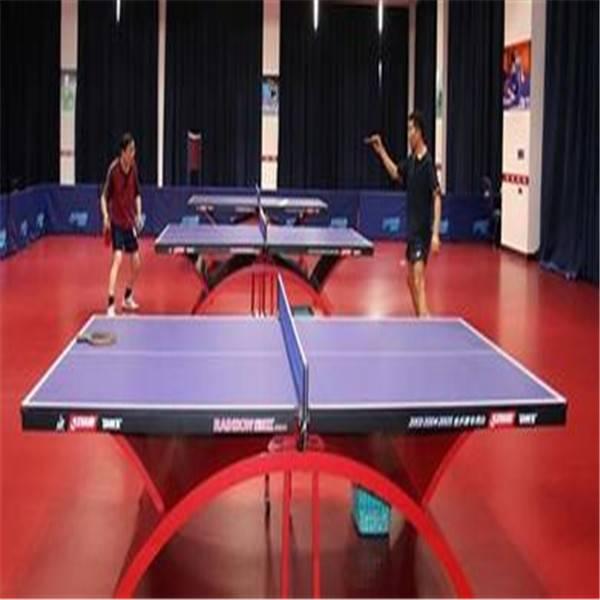 Muti-Purpose PVC Vinyl Flooring/Table Tennis Flooring