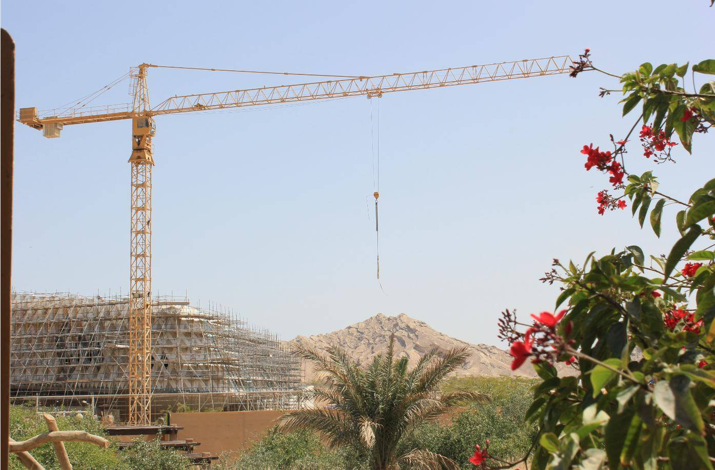 QTZ50 tower crane for sale