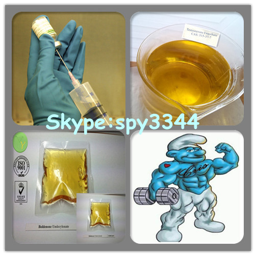 Steroid 4-Androstenedione with best Prices