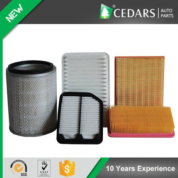 Reliable Auto Parts Wholesaler Supplies Air Filter