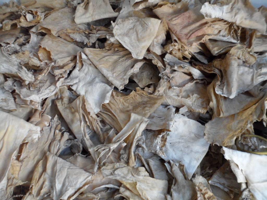 gelatin leather