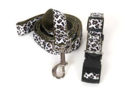 New hot-selling pet leash & collar