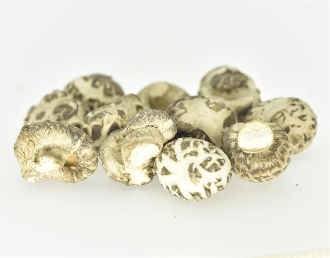 Nature Dried Mushroom, White Flower Mushroom, Shiitake Mushroom