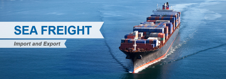 Sea Freight from Vietnam to the world