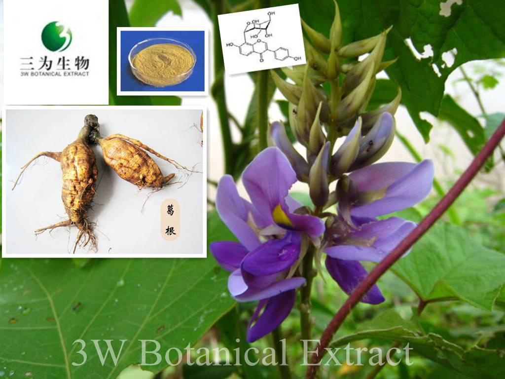 Kudzu Root Extract(sales05@3wbio.com)