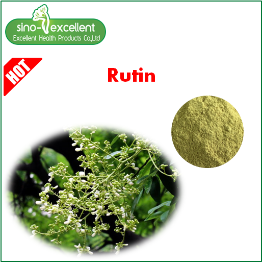 sophora japonica extract 95% quercetin,rutin powder