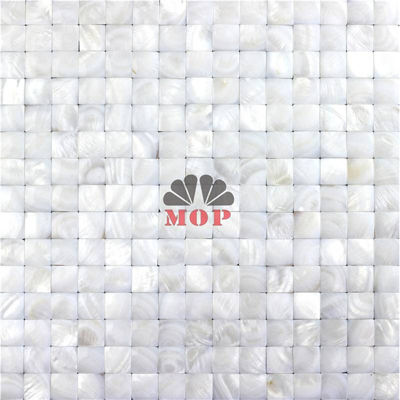 3D mother of pearl mosaic tile Corridor
