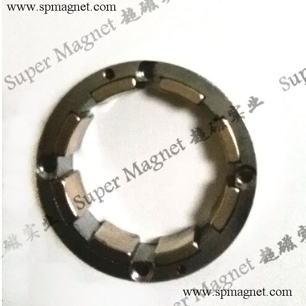 AND49.211.94mm   Sintered NdFeB magnetic rotor with 8 segments