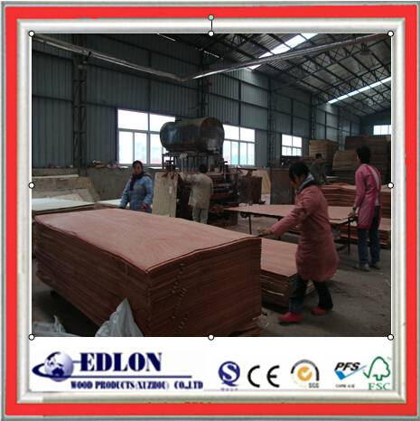 furniture grade 18mm commercial plywood bintangor faced plywood