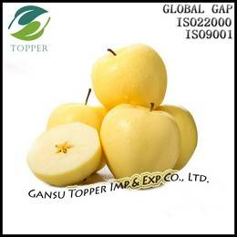 Fresh Golden Apple Grade A