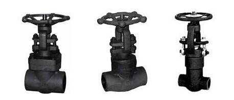 Forged Steel Valves(gate valve / Globe valve / Check valve)