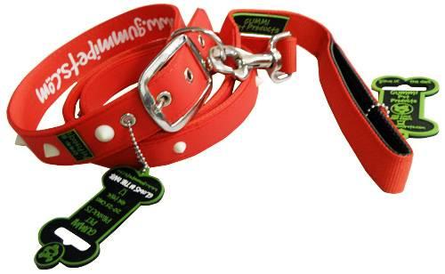 Dog Collar & Leash