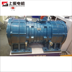The Biggest Vibrator Motor In The World With 500KN And 32KW