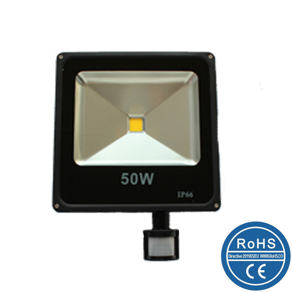 Slim Sensor LED Flood light/LED flood light with Pir/10W/20W/30W/50W/70W/100W