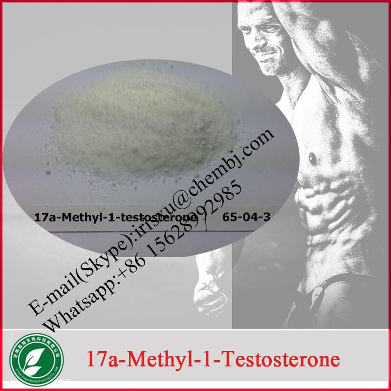 Anabolic Steriod  17-Methyltestosterones with Factory Price 65-04-3 for Bodybuilding