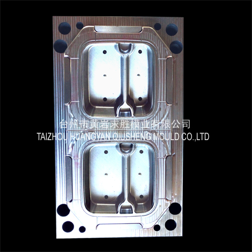 PP disposable 2 grid lunch boxes plastic mould
