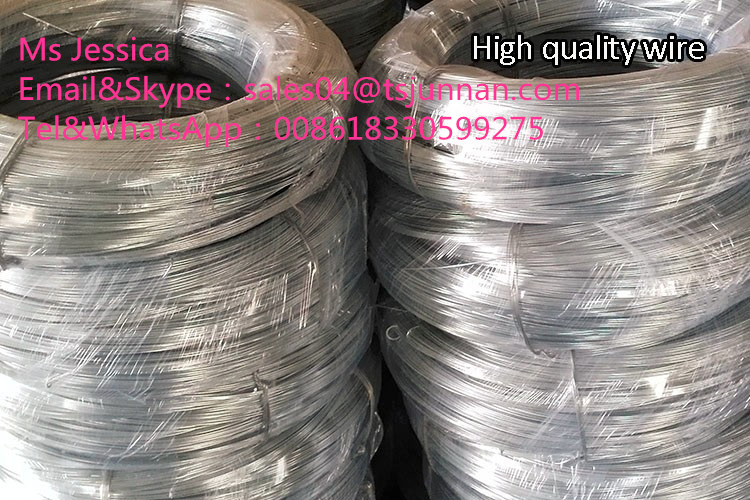 low price GI wire, electro galvanized iron wire