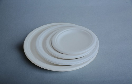 100% Biodegradable Sugarcane Bagasse Plate