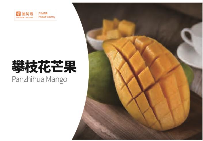 chinese fresh fruit panzhihua Mango supplier