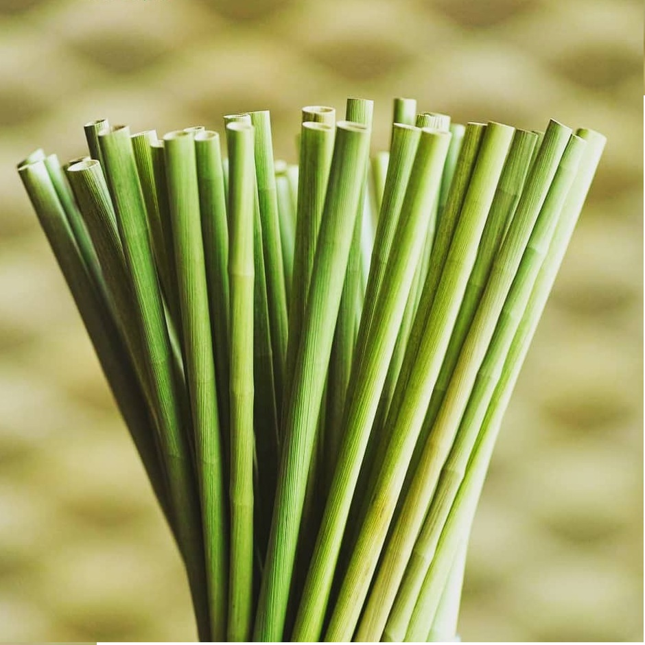Why don't you use Eco Friendly Drinking Grass Straws?