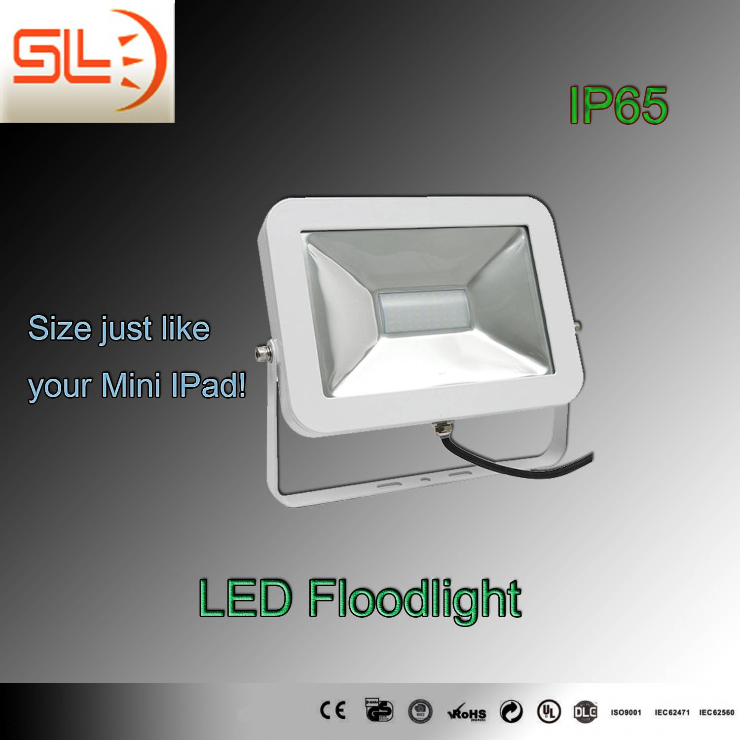 10W Mini iPad LED Floodlight with CE