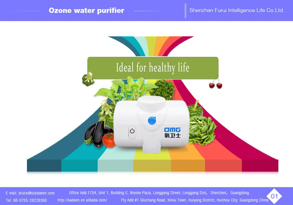 Household Ozone Water Purifier Type water purification