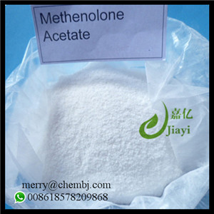 Bodybuilding Supplement Steroid Powder Methenolone Acetate / Primobolan