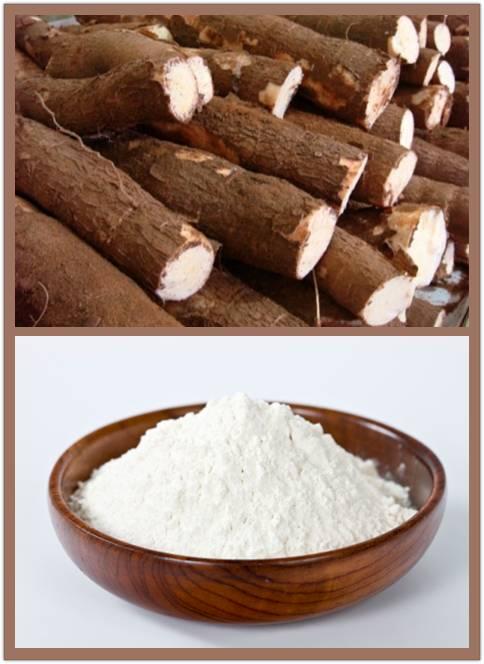 tapioca starch flour